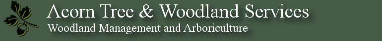 Acorn Tree & Woodland Services